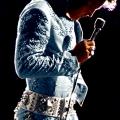Elvis jumpsuit profile