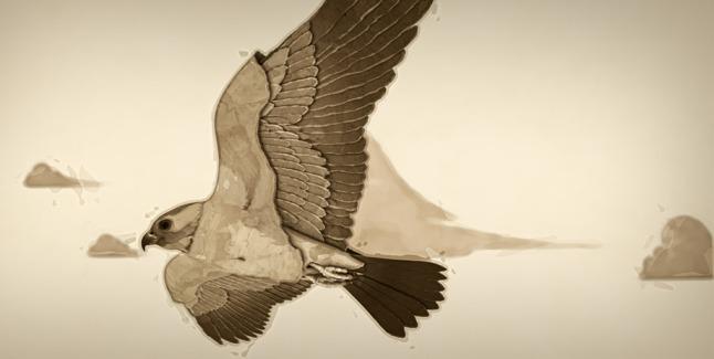 VB14 Luna bird